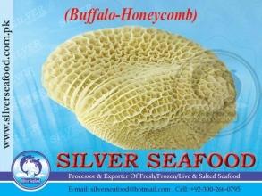 Buffalo-Honeycomb.