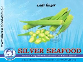 Lady-finger
